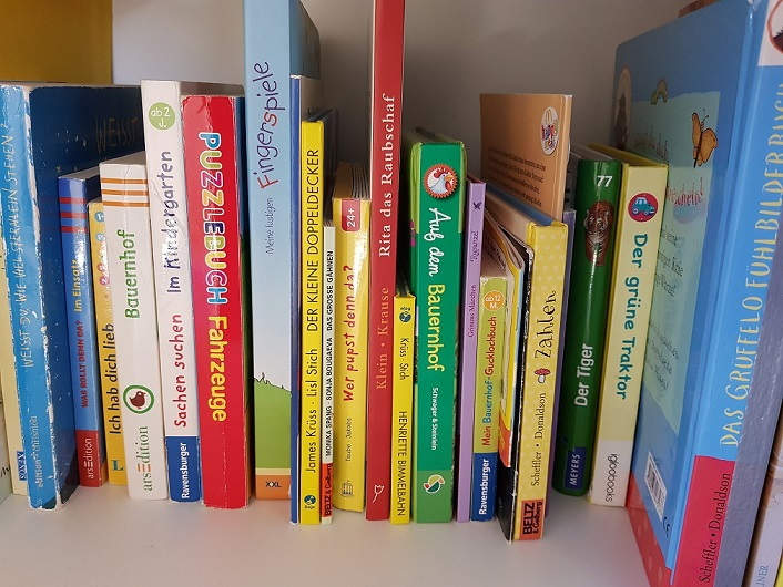 Bücherregal. Bücher für Jungs.