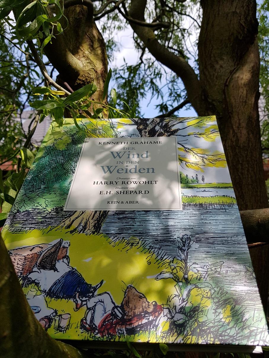 Wind in den Weiden. Hardcover abgelichtet in einem Weidenbaum.